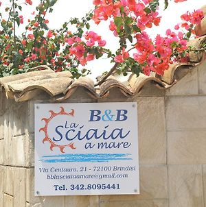 B&B La Sciaia A Mare photos Exterior