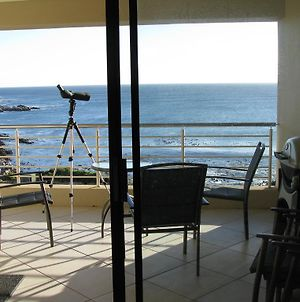 Holiday Home A104 Whale Cove photos Room