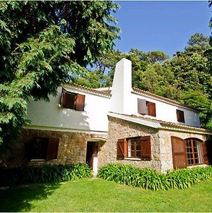 Stunning Sintra Mountain Property photos Exterior