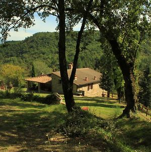 Relax In Tuscany photos Room