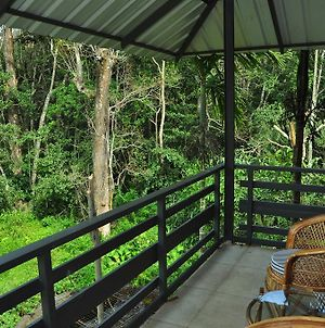 The Woods Resorts Wayanad photos Room
