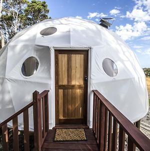 Mile End Glamping Pty Ltd photos Exterior