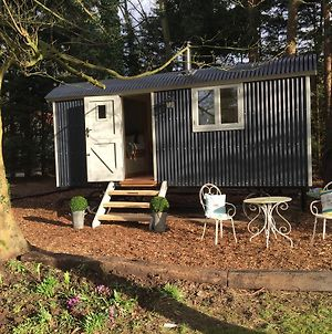 Chez Marguerite Luxury Shepherd'S Hut photos Exterior