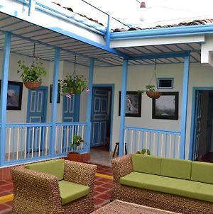 Hostal Bosque De Niebla photos Room