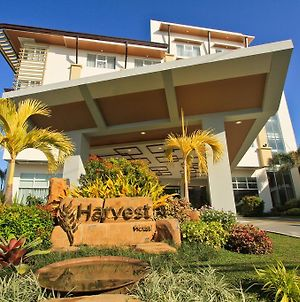 The Harvest Hotel Managed By Hii photos Exterior