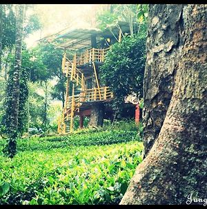 Jungle Jive Tree House Munnar photos Exterior