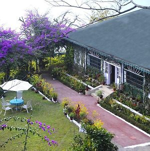Singtom Tea Estate & Resort photos Exterior