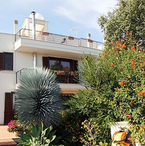 B&B Villa Il Sughero photos Exterior