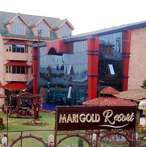 Marigold Resort photos Exterior