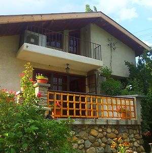 The 1St Guest House In Kyustendil - Guest Villa - Casa Rosa - Suitable For Families, Friends, Relax, Sport Enthusiasts And Travel Addicts photos Room