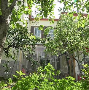 Lotus Garden Hostel Izmir photos Exterior