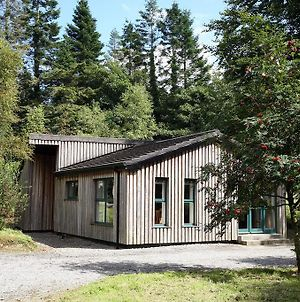 Ballyhoura Mountain Lodges photos Room