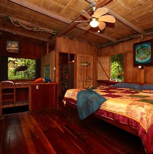 Casa Rio Blanco Eco Friendly B&B photos Room