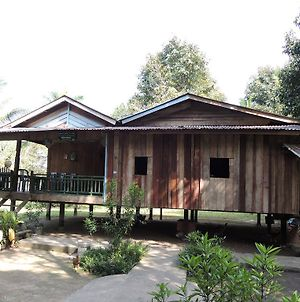 Laced Woodpecker Homestay photos Exterior