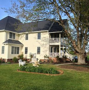 Ma Margarets House Bed And Breakfast photos Exterior