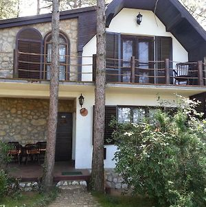 Guesthouse Bajka photos Exterior