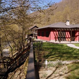 Boyana Vacation Houses photos Exterior