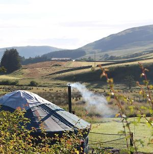 Ettrick Valley Yurts photos Exterior
