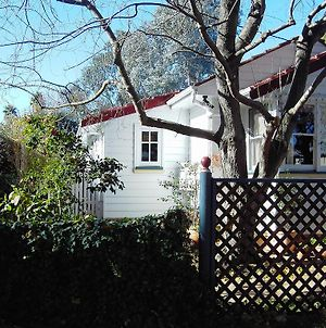 A Winter Rose Cottage B And B photos Exterior