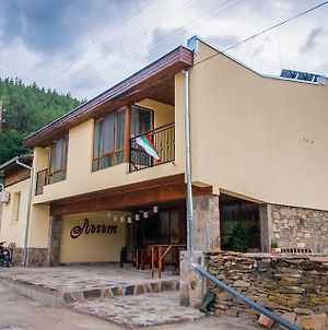 Guest House Lugut photos Exterior