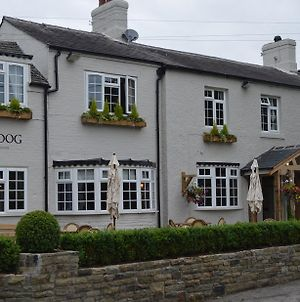 The Dog In Over Peover photos Exterior