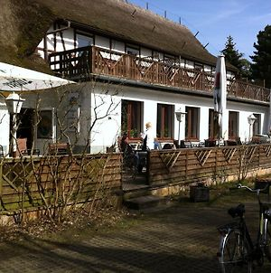Pension Strandnest photos Exterior