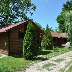 Turul Guesthouse And Camping photos Exterior
