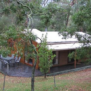 Bagara Cottage Holiday Rental photos Exterior