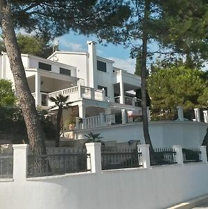 Apartments Croatia photos Exterior