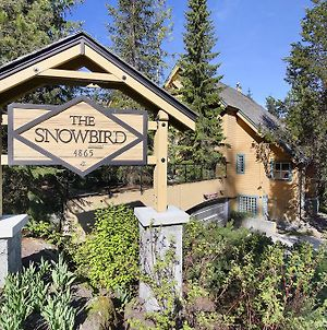 Snowbird By Elevate Vacations photos Exterior