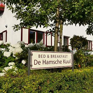 Bed And Breakfast De Hamsche Kuul photos Exterior