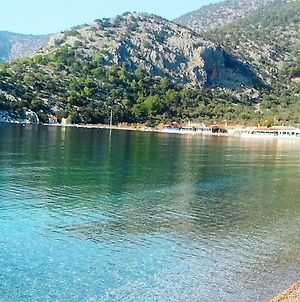 Beachfront Self-Catering Studios In Psatha Bay - 60Km From Athens photos Exterior
