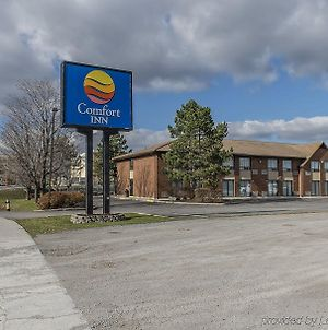 Comfort Inn Hwy. 401 photos Exterior