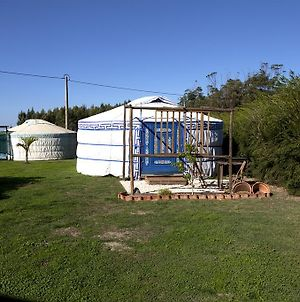 Quintal Yurts photos Exterior