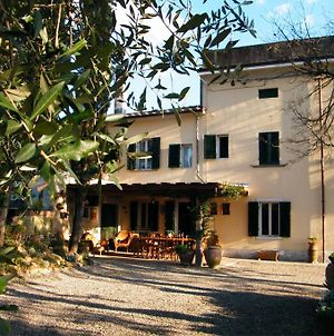 """""""L'Olivo"""" Country House photos Exterior"""