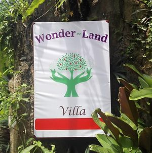 Wonder-Land Villa photos Exterior