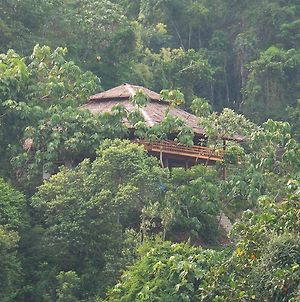 Bukit Lawang Hill Resort photos Exterior