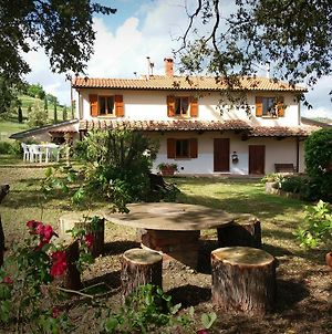 Podere Le Lame Farmhouse photos Exterior