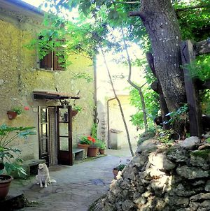 Rustic Cottage In Tuscany With Garden And Parking photos Exterior
