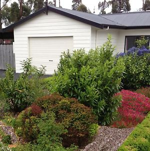 The Cosy Cottage photos Exterior