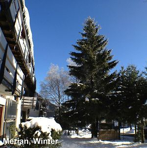 Pretty Apartment Near Ski Area In Winterberg Germany photos Exterior