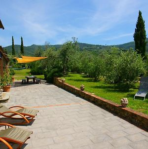 Beautiful Holiday Home In Vinci With Swimming Pool photos Exterior