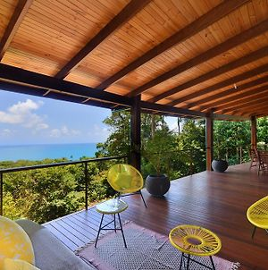 Zamia Daintree Holiday House photos Exterior