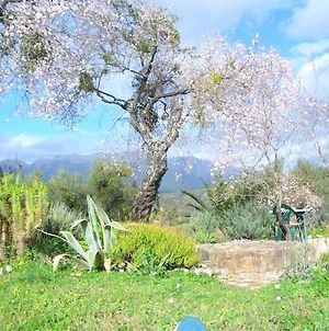 House With 2 Bedrooms In Algatocin With Wonderful Mountain View Private Pool Enclosed Garden 60 Km From The Beach photos Exterior