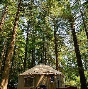 South Jetty Camping Resort Yurt 5 photos Exterior