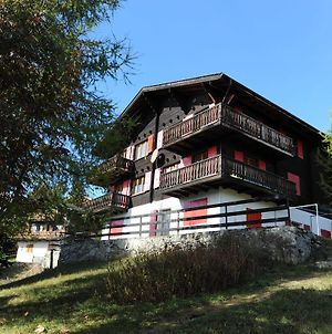 Comfy Apartment In Riederalp With Balcony photos Exterior