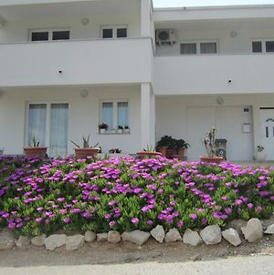 Pleasing Apartment In Pag Dalmatia Croatia photos Exterior