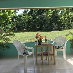 Garden Apartment - 1 Mile To The Beach, Welcome B-Fast With 5 Nts Stay photos Exterior