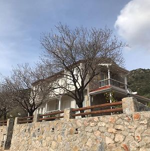 Villa Cetin photos Exterior