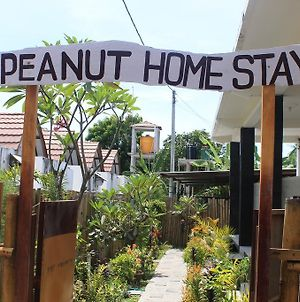 Peanut Homestay photos Exterior